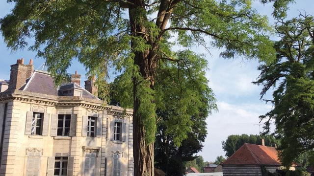 home-parc-chateau-argoeuves1